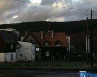 Wildshasen 2012 6816